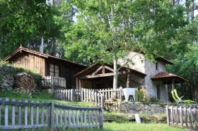 Alojamento Local em Couto de Esteves